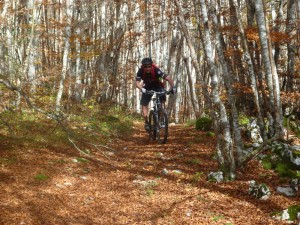 VTT Vercors Massif des Coulmes- Le single du circuit 34